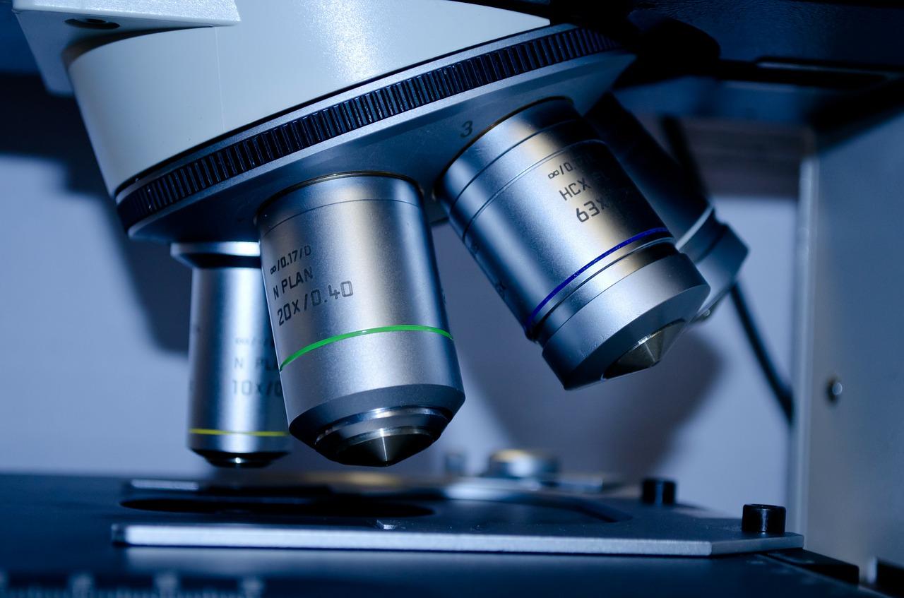 badania mykologiczne